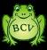 BCV - Die Quakenbacher e.V.
